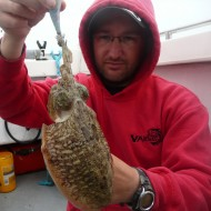 Cuttlefish on Jig