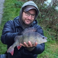 3lb Perch Hungerford