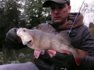 Nice Perch on Ultralight Tackle