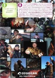 Ecogear Japan Leaflet