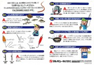 Japanese Power Isome Leaflet