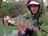 Dan with Perch