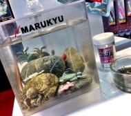 Marukyu Tank