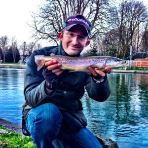 Newbury Brown Trout