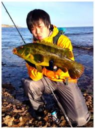 Big Wrasse For Masaaki Fukuoka