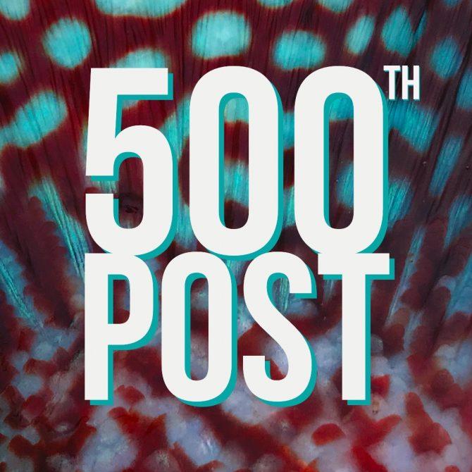 500th Post