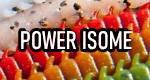 Marukyu Power Isome