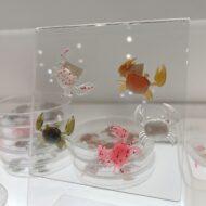 Nikko Super Little Crabs Colours